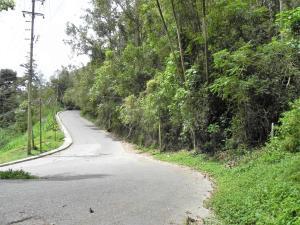 Terreno En Ventaen San Antonio De Los Altos, El Picacho, Venezuela, VE RAH: 18-2296