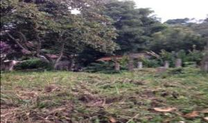 Terreno En Ventaen Caracas, La Union, Venezuela, VE RAH: 18-215