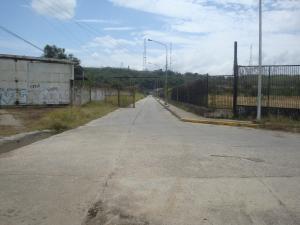 Terreno En Venta En Santa Teresa - Tomuso Código FLEX: 18-5366 No.2