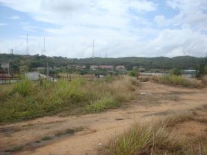 Terreno En Venta En Santa Teresa - Tomuso Código FLEX: 18-5366 No.12