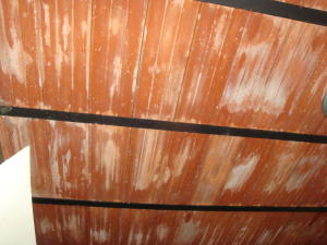 En Venta En Maracay - Santa Rosa Código FLEX: 18-7635 No.12