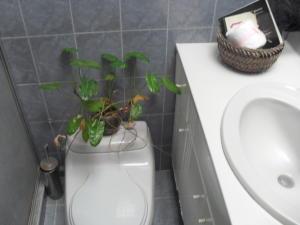 Casa En Venta En Maracay - El Castano (Zona Privada) Código FLEX: 18-10348 No.17