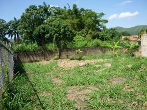 Terreno En Venta En Maracay - El Limon Código FLEX: 18-11696 No.8