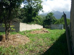 En Venta En Maracay - El Limon Código FLEX: 18-11696 No.10