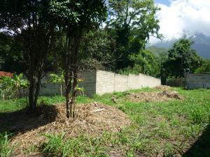 En Venta En Maracay - El Limon Código FLEX: 18-11696 No.12