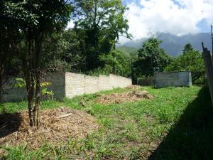 En Venta En Maracay - El Limon Código FLEX: 18-11696 No.13