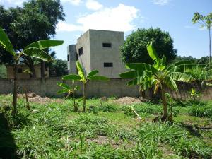 Terreno En Venta En Maracay - El Limon Código FLEX: 18-11696 No.14