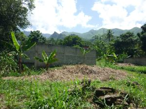 Terreno En Venta En Maracay - El Limon Código FLEX: 18-11696 No.16