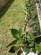 En Venta En Maracay - Lomas de Palmarito Código FLEX: 18-15981 No.12