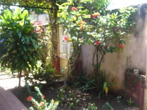 En Venta En Maracay - El Toro de Las Delicias Código FLEX: 18-16613 No.1