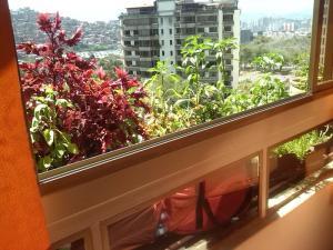 Apartamento En Venta En Caracas - Terrazas del Avila Código FLEX: 19-1522 No.4