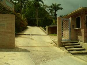 Apartamento En Venta En Caracas - Oripoto Código FLEX: 19-2420 No.17