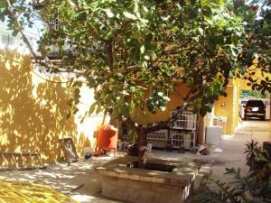 Casa En Venta En Maracay - El Castano (Zona Privada) Código FLEX: 19-3624 No.14