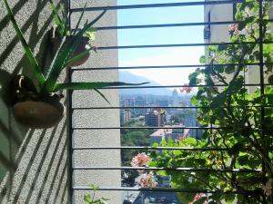 Apartamento En Venta En Caracas - Mariperez Código FLEX: 19-3993 No.7