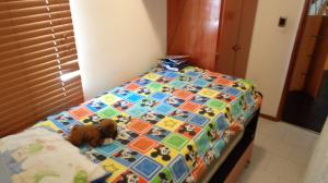 Apartamento En Venta En Caracas - Guaicay Código FLEX: 19-4156 No.4