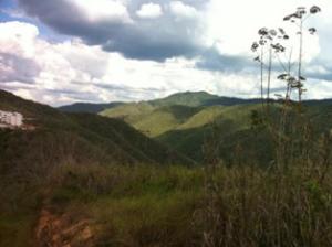 Terreno En Venta En Caracas - Bosques de la Lagunita Código FLEX: 19-4364 No.7