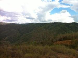 Terreno En Venta En Caracas - Bosques de la Lagunita Código FLEX: 19-4364 No.9