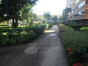 En Venta En Higuerote - Agua Sal Código FLEX: 19-4672 No.14