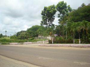 Terreno En Venta En Tacarigua - Tacarigua Código FLEX: 19-4928 No.1