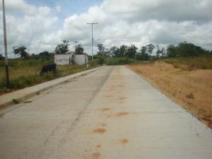 Terreno En Venta En Tacarigua - Tacarigua Código FLEX: 19-4928 No.4