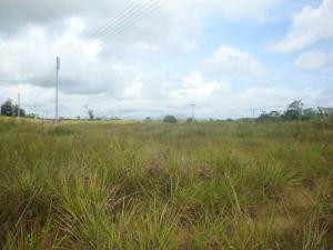Terreno En Venta En Tacarigua - Tacarigua Código FLEX: 19-4928 No.7