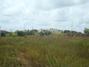 Terreno En Venta En Tacarigua - Tacarigua Código FLEX: 19-4928 No.10