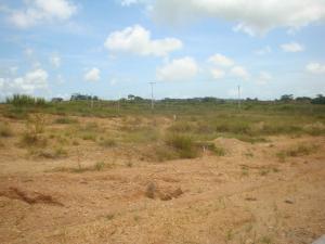 Terreno En Venta En Tacarigua - Tacarigua Código FLEX: 19-4928 No.11