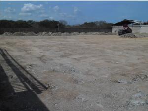 Industrial En Venta En Santa Cruz de Aragua - Zona Industrial San Crispin Código FLEX: 19-5698 No.2