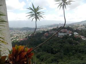 Apartamento En Venta En Caracas - Lomas de Prados del Este Código FLEX: 19-6444 No.8