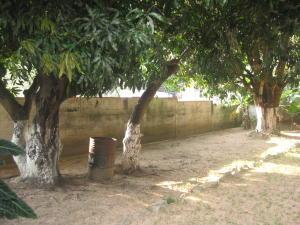 Casa En Venta En Maracay - El Castano (Zona Privada) Código FLEX: 19-5511 No.6