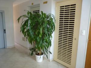 Apartamento En Venta En Maracay - Las Delicias Código FLEX: 19-7602 No.8
