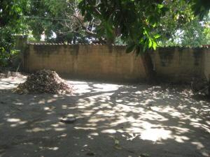 Terreno En Venta En Maracay - El Limon Código FLEX: 19-7769 No.1