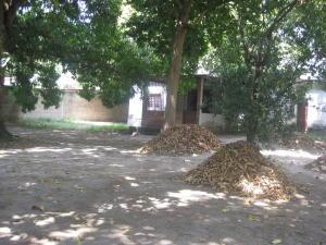 Terreno En Venta En Maracay - El Limon Código FLEX: 19-7769 No.2