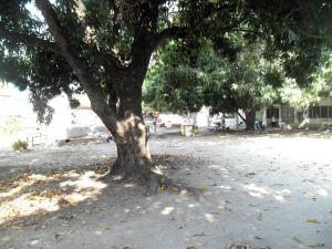 En Venta En Maracay - Barrio Sucre Código FLEX: 19-8103 No.5