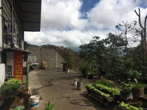 Galpon - Deposito En Venta En Caracas En Mariche - Código: 19-8311