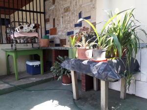 En Venta En Maracay - Barrio Bolivar Código FLEX: 19-8411 No.11