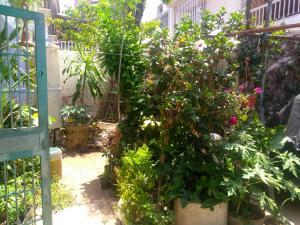 Casa En Venta En Caracas En Palo Verde - Código: 19-9046