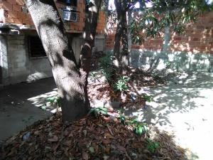 Casa En Venta En Maracay - La Cooperativa Código FLEX: 19-10203 No.12
