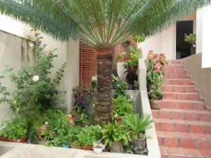 Casa En Venta En Caracas - Monterrey Código FLEX: 19-11752 No.3