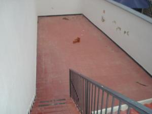 Casa En Venta En Caracas - Los Dos Caminos Código FLEX: 19-13163 No.7