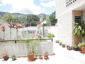Apartamento En Venta En Maracay - El Limon Código FLEX: 19-13474 No.3