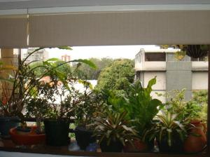 Apartamento En Venta En Caracas - Santa Eduvigis Código FLEX: 19-13673 No.10