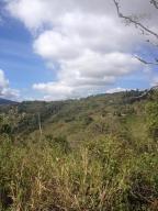 Terreno En Venta En Caracas - Sabaneta Código FLEX: 19-13681 No.11