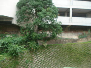 Apartamento En Venta En Caracas - Las Mercedes Código FLEX: 19-14149 No.15