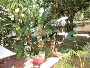 Casa En Venta En Caracas - El Cafetal Código FLEX: 19-14377 No.11