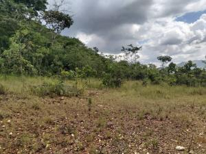 Terreno En Venta En Valencia - Guataparo Código FLEX: 19-14600 No.13