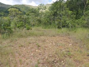 Terreno En Venta En Valencia - Guataparo Código FLEX: 19-14600 No.16