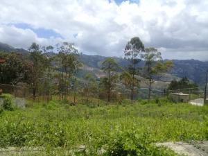 En Venta En Caracas - El Junquito Código FLEX: 19-14863 No.6