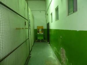 Galpon - Deposito En Alquiler En Valencia - Flor Amarillo Código FLEX: 19-17197 No.14