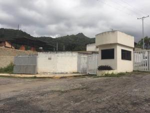 Terreno En Venta En Maracay - El Limon Código FLEX: 19-17811 No.0